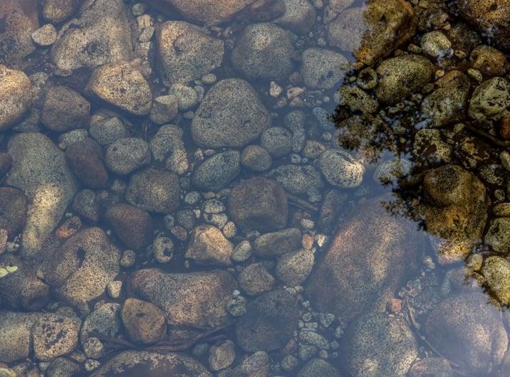 pond-little-stones